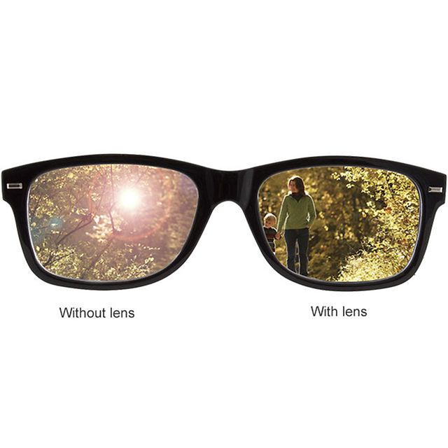 Glasses displaying Polarised Lenses