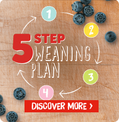 Cow and Gate 5 Step Weaning Plan