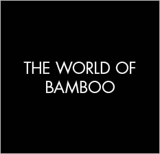 The world of Bamboo