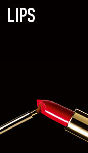 Max Factor Lips