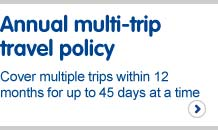 Annual multi-trip travel policy. Cover multiple trips within 12 months for up to 45 days at a time