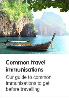 Common travel immunisations